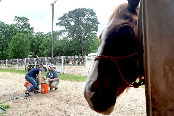 "Members of Leadership Southeast Texas gathered at Stable - Spirit, a therapeutic equestrian facility in Rose City which is still recovering from Harvey damage, to build new ""car washes"" to replace those lost. Car washes are a sensory-therapy tool used by clients during their riding lessons. The project was one selected from two two projects pitched by Youth Leadership Southeast Texas groups. Orangefield and Bridge City-based youth members offered proposals, with Bridge City's Stable - Spirit project being the one selected by the adult leadership. Entergy also presented stable owner Katie Durio with a check for $1000, which was a grant for which she had applied to assist families in paying for their therapeutic riding lessons. Photo taken Tuesday, April 23, 2019 Kim Brent/The Enterprise"