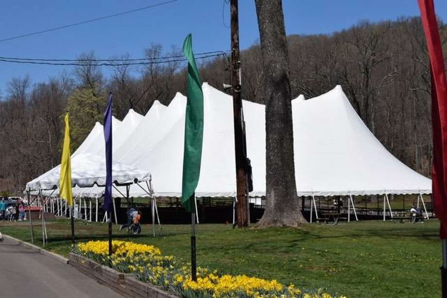 The big tent and daffodils at the festival, taking placing April 28-29. Photo: Ernie Larsen / Contributed Photo