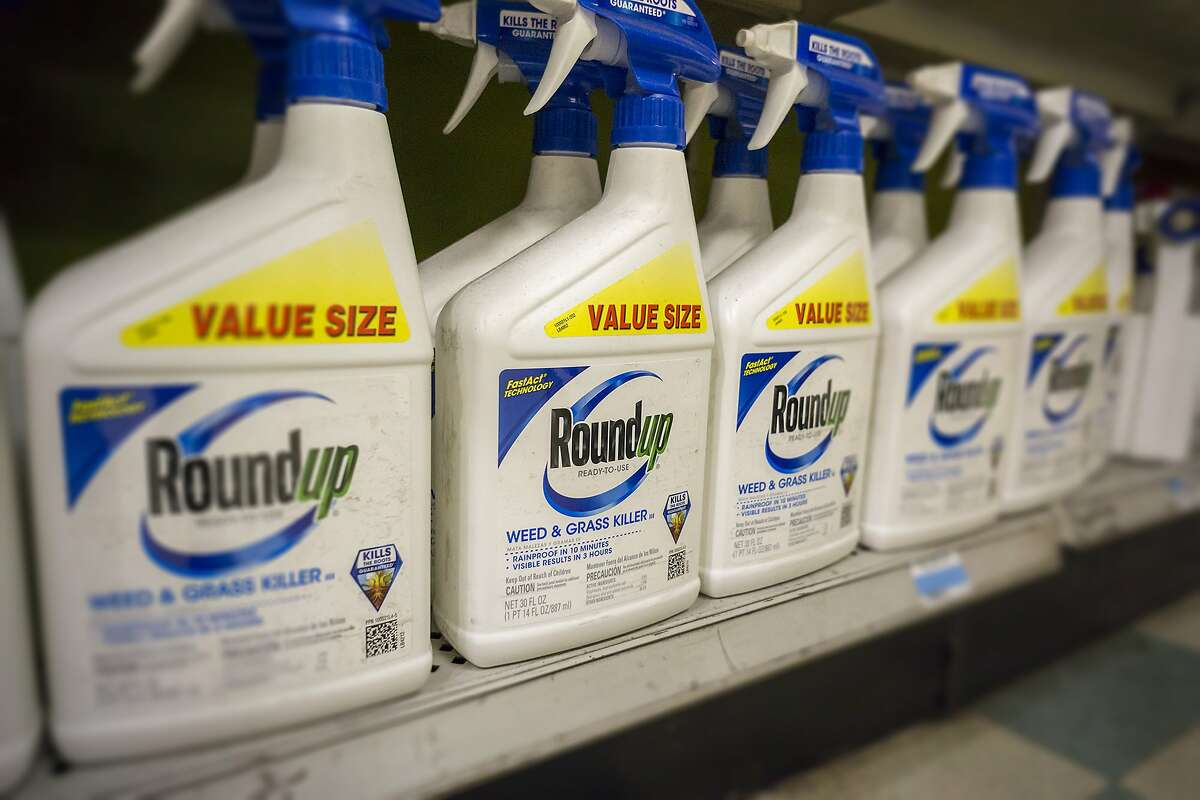 Containers of Monsanto Roundup weed killer on a garden supply store shelf in New York on May 23, 2016. (Richard B. Levine/Sipa USA/TNS)
