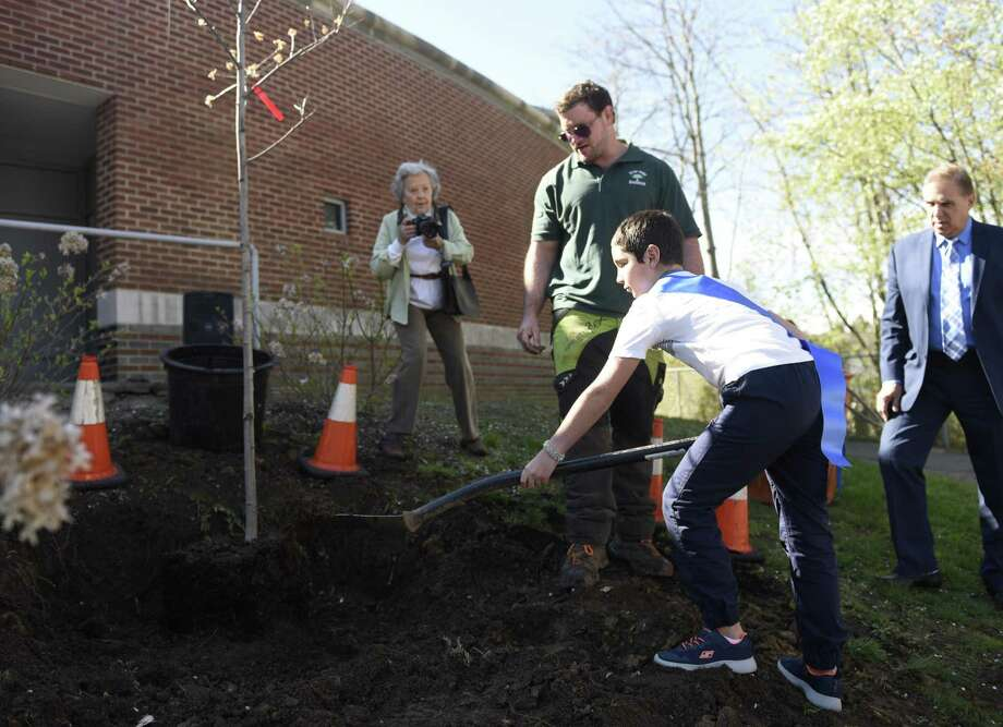 """Fifth-grader Toby Gomez heaves a pile of dirt at the base of a newly-planted tree at the Arbor Day tree-planting at Cos Cob School in the Cos Cob section of Greenwich, Conn. Thursday, April 25, 2019. Representatives from DEEP and the Greenwich Tree Conservancy joined Cos Cob students and faculty to plant a tree behind the school as students sang """"This Land Is Your Land."""" Photo: Tyler Sizemore / Hearst Connecticut Media / Greenwich Time"""