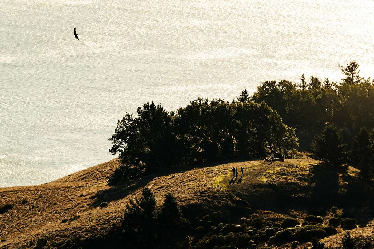 Hikers make their way through the trees at Mount Tamalpais State Park in Mill Valley, Calif., on Thursday, Dec. 13, 2018.