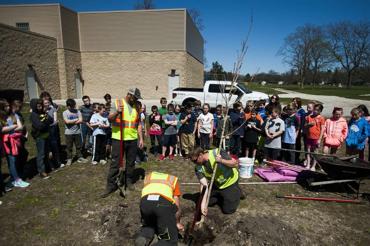 Arborists with the City of Midland plant a maple tree before an audience of Plymouth Elementary fourth graders during a presentation in honor of Arbor Day by Dow Gardens staff on Thursday, April 25, 2019 at the school. (Katy Kildee/kkildee@mdn.net)