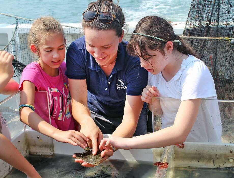 Avalon Bunge, an educator for The Maritime Aquarium at Norwalk, helps participants touch a flounder during a past Marine Life Encounter Cruise on Long Island Sound. The 2019 season of these fun eye-opening cruises begins with weekend cruises in May and June. Photo: Maritime Aquarium / Contributed Photo