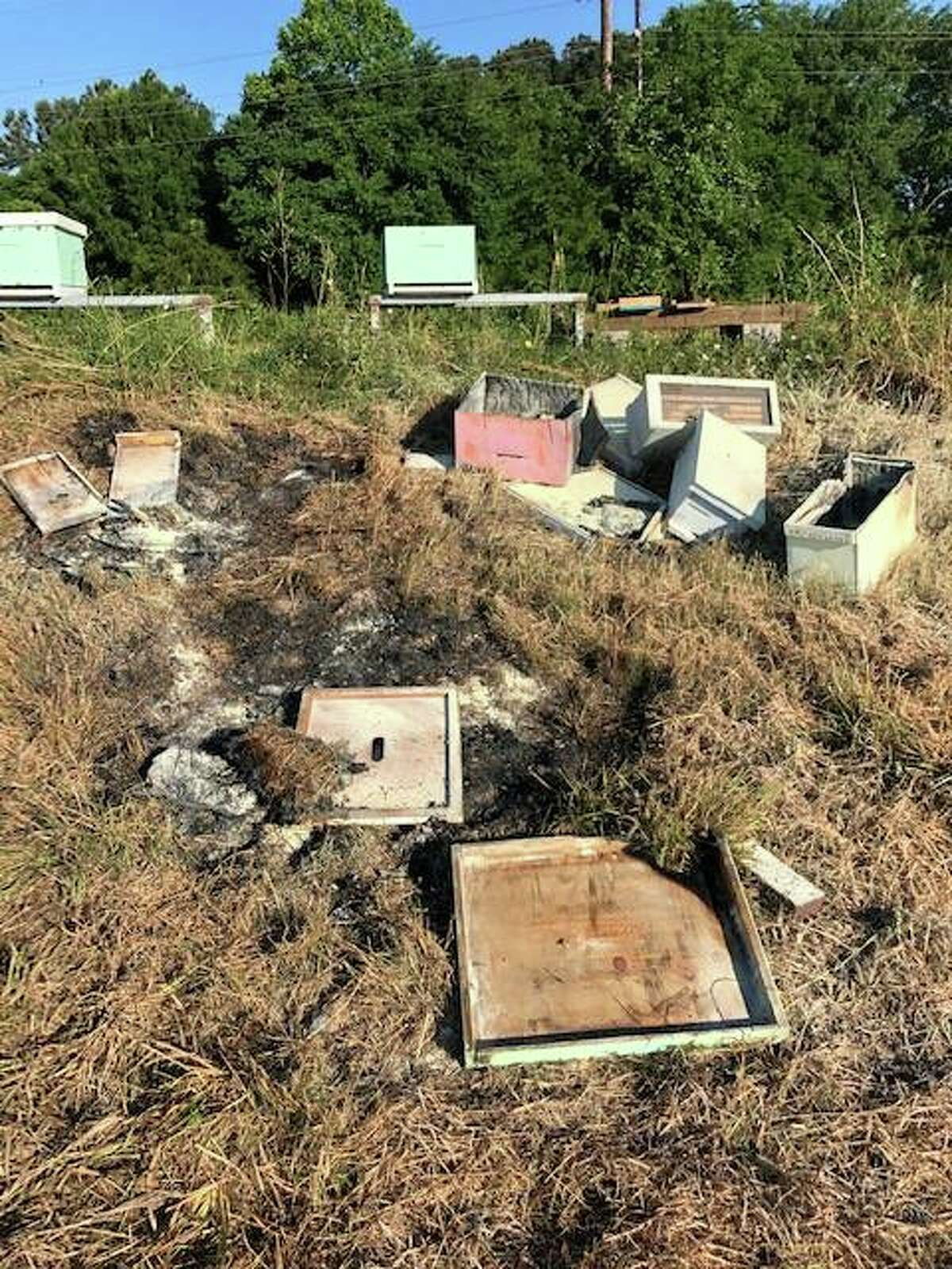 Police are searching for the person responsible for dumping dozens of beehives out and setting them on fire in Alvin over the weekend.