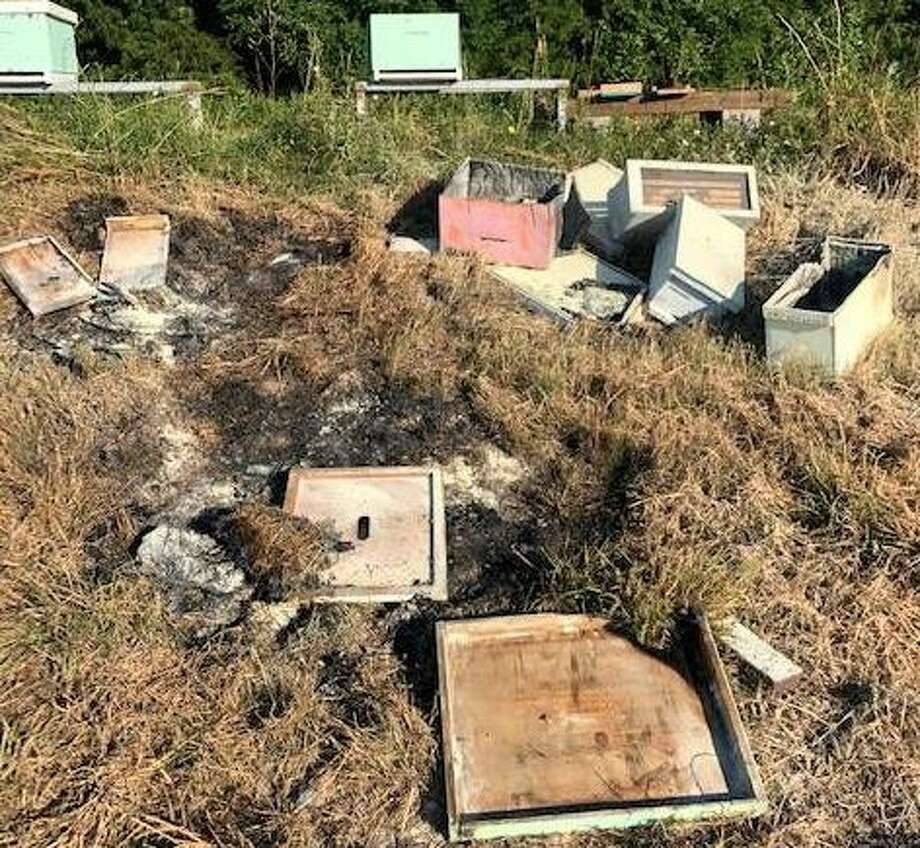 Police are searching for the person responsible for dumping dozens of beehives out and setting them on fire in Alvin over the weekend. Photo: Brazoria County Beekeepers Association