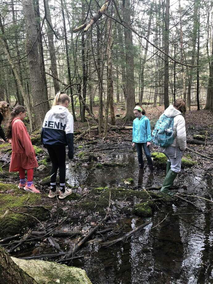 St. Thomas School fifth-graders explore a brook at Nature's Classroom. Photo: Contributed Photo