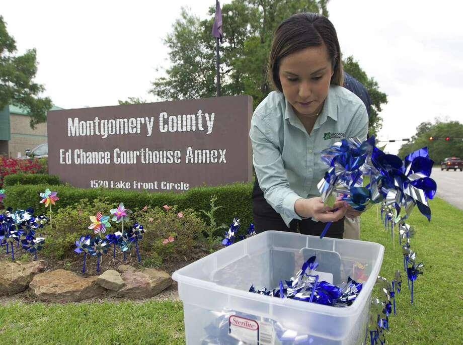 Yesenia Garcia gathers pinwheels as volunteers installed 2,166 pinwheels which represent the 2,166 children who walked through the doors of Children's Safe Harbor in Montgomery County last year in front of the Montgomery County Ed Chance Courthouse Annex, Tuesday, April 30, 2019, in The Woodlands. Photo: Jason Fochtman, Houston Chronicle / Staff Photographer / © 2019 Houston Chronicle