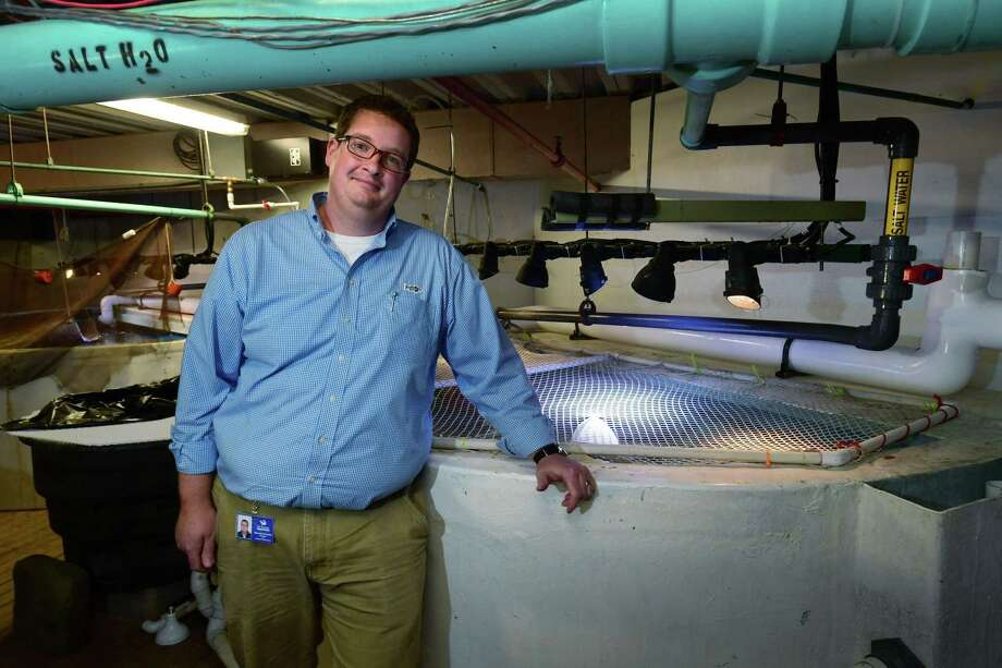 Barrett Christie, The Maritime Aquarium Director of Animal Husbandry, with the filtration systems for the exhibits Wedensday, May 1, 2019, at the aquarium in Norwalk, Conn. Christie is the first person in the state to pass a national mastery-level exam focused on water quality in public aquariums. Photo: Erik Trautmann / Hearst Connecticut Media / Norwalk Hour