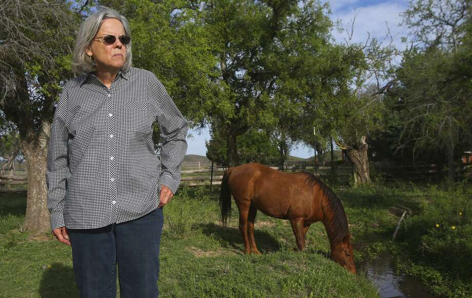 Former Brewster County Judge Val Beard stands April 10, 2015 on her property at the Leoncita Ranch where she lives near Alpine, Texas. A proposed gas pipeline was scheduled to pass through the area. Pending legislation would make the eminent domain process more transparent. Photo: John Davenport /San Antonio Express-News / ÂSan Antonio Express-News/John