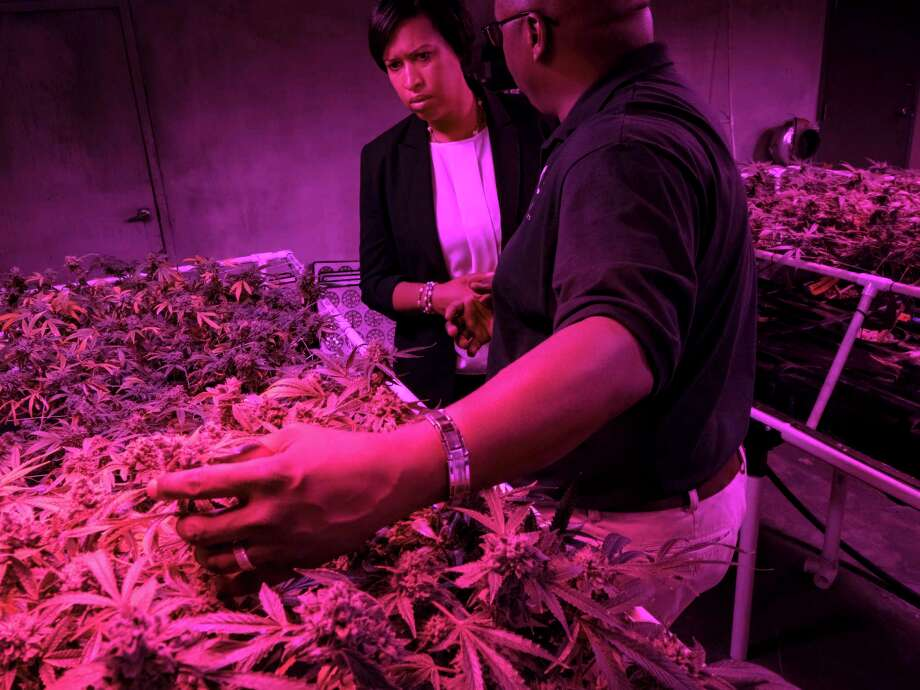 Mayor Muriel Bowser listens to District Growers leader Corey Barnette describe how his company cultivates medical marijuana at his Northeast Washington facility on May 1, 2019. Photo: Washington Post Photo By Bonnie Jo Mount. / The Washington Post