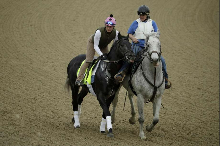 Kentucky Derby entrant Gray Magician is led on the track during a workout at Churchill Downs Wednesday, May 1, 2019, in Louisville, Ky. The 145th running of the Kentucky Derby is scheduled for Saturday. Photo: Charlie Riedel / Associated Press / Copyright 2019 The Associated Press. All rights reserved.