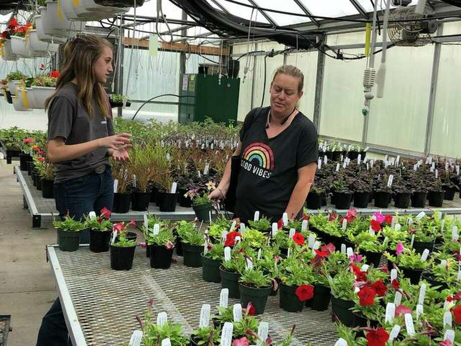 An EHS student answers questions about the plants that they have grown and are now available for sale. The annual Edwardsville High School Greenhouse Plant Sale is going on Friday until 6 p.m. and Saturday 8 a.m. to noon. Photo: By Julia Biggs | The Intelligencer