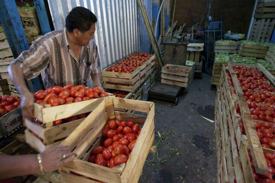 ARCHIVO— Trabajadores separan tomates en el mercado Central de Abastos en la Ciudad de México en 2008. El Acuerdo de Suspensión de 1996 entre México y Estados Unidos surge a partir de quejas de productores americanos sobre el bajo precio de los tomates importados desde México, que aprieta su margen de competitividad en el mercado. Pero, a partir del próximo martes 7 de mayo es muy probable que el entendimiento se suspenda y se reactive la investigación desde Estados Unidos e imposición de cuotas compensatorias a la importación de tomates mexicanos. Photo: Gregory Bull /AP / AP