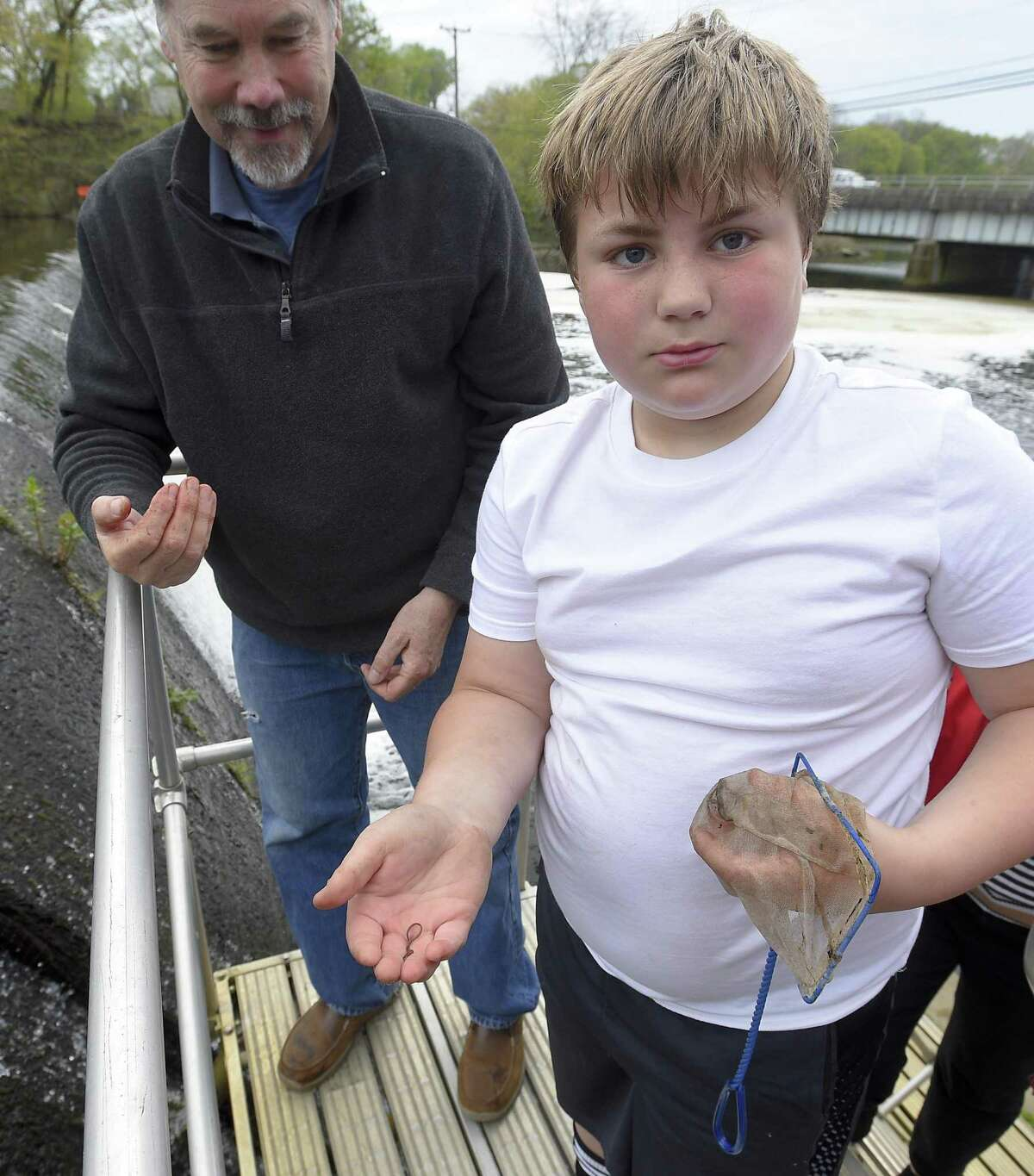 Volunteer Bob Stanton and Henry Wahl, 10, of Riverside show a Baby American Glass Eel they captured at the Mianus Pond Fish Ladder on May 4, 2019 in Greenwich, Connecticut. The fishway staircase is one of 44 fishways spread throughout Connecticut and is used to count the yearly migration of Alewifo, Blueback Herring and other species. An average of 5,600 different fish species pass through the Mianus Fishway.