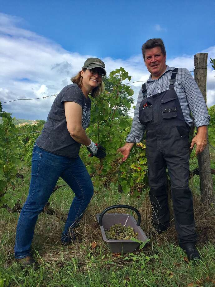 Diana Lucz (left) and Steve Lawrence tend the vines at Chateau La Corne, the Bordeaux estate that they own. Photo: Chris James