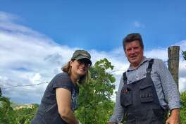 Diana Lucz (left) and Steve Lawrence tend the vines at Chateau La Corne, the Bordeaux estate that they own.