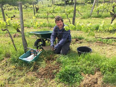 Steve Lawrence, who is British, worked at French wineries instead of attending college. He later transitioned to sales roles in the wine industry. Owning Chateau La Corne, he says, has allowed him to return to his earlier career path of winemaking and viticulture. Photo: Diana Lucz