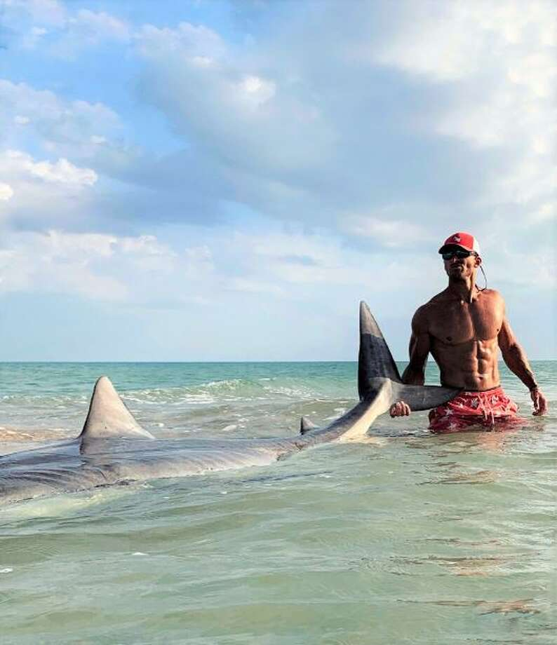 PHOTOS: Elliot Sudal had been fishing for more than a day when he landed a tiger shark off the Gulf Coast early last week.See photos of the massive tiger shark ... Photo: @acksharks