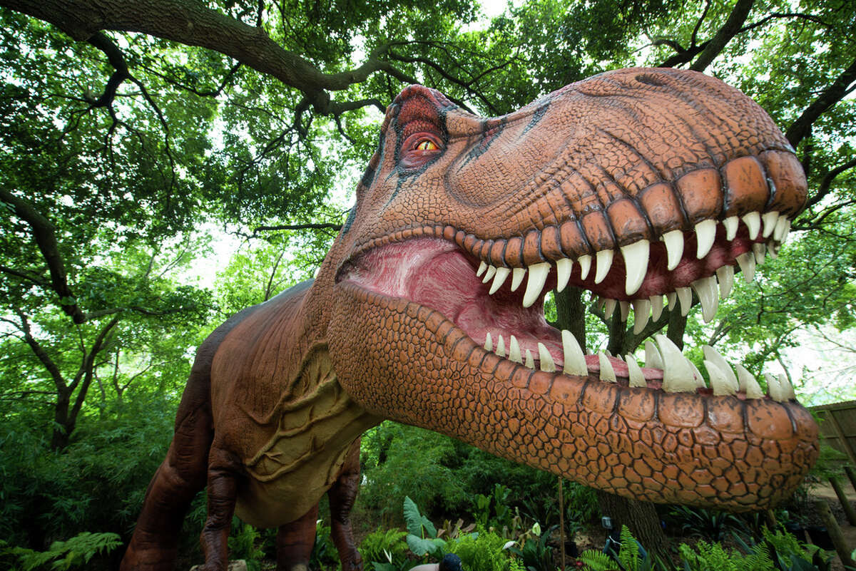 Catch dinosaurs at the Houston ZooThe zoo's exhibit of life-size animatronic dinosaurs will close Sept. 2.