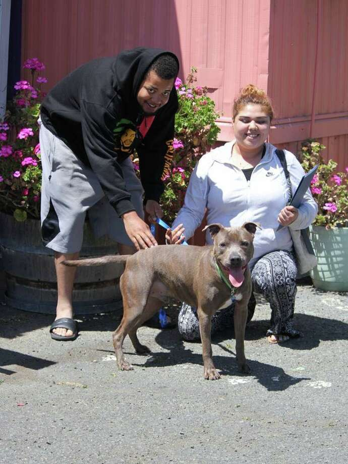 A family was reunited with their lost dog at an adoption event over the weekend. Photo: Courtesy Of The Humane Society Of The North Bay