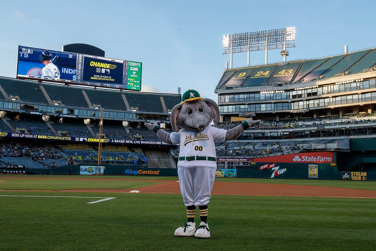 The Oakland A's mascot Stomper stands on the field during a game delay to due a faulty lighting tower before the game against the Cincinnati Reds at the Oakland Coliseum on May 7, 2019 in Oakland, Calif.