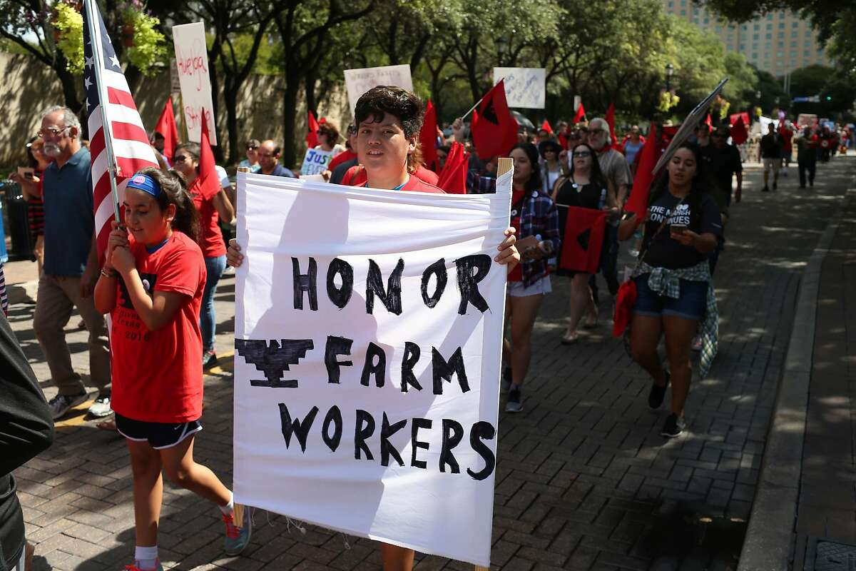 Union members and supporters gather to commemorate the 50th anniversary of the 1966 Starr County United Farm Workers Strike and March during a Mass at San Fernando Cathedral followed by a march to Milam Park, Monday, Sept. 5, 2016.