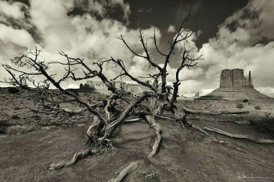 Russel Kerlin's photo 'Dead Tree -- Monument Valley' is part ofMidland Camera Club's display this month at the Grace A. Dow Memorial Libraryin Midland. More information inside.  / Russ Kerlin Photography