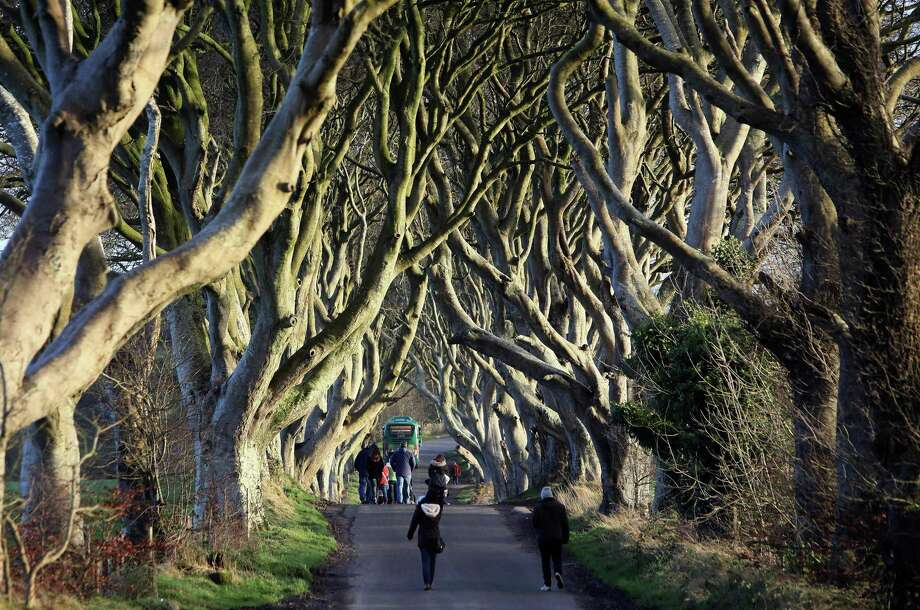 "People walk along the Dark Hedges tree tunnel, which was featured in the TV series ""Game of Thrones"", near Ballymoney in County Antrim, Northern Ireland, in 2016. Photo: Getty Images / AFP or licensors"