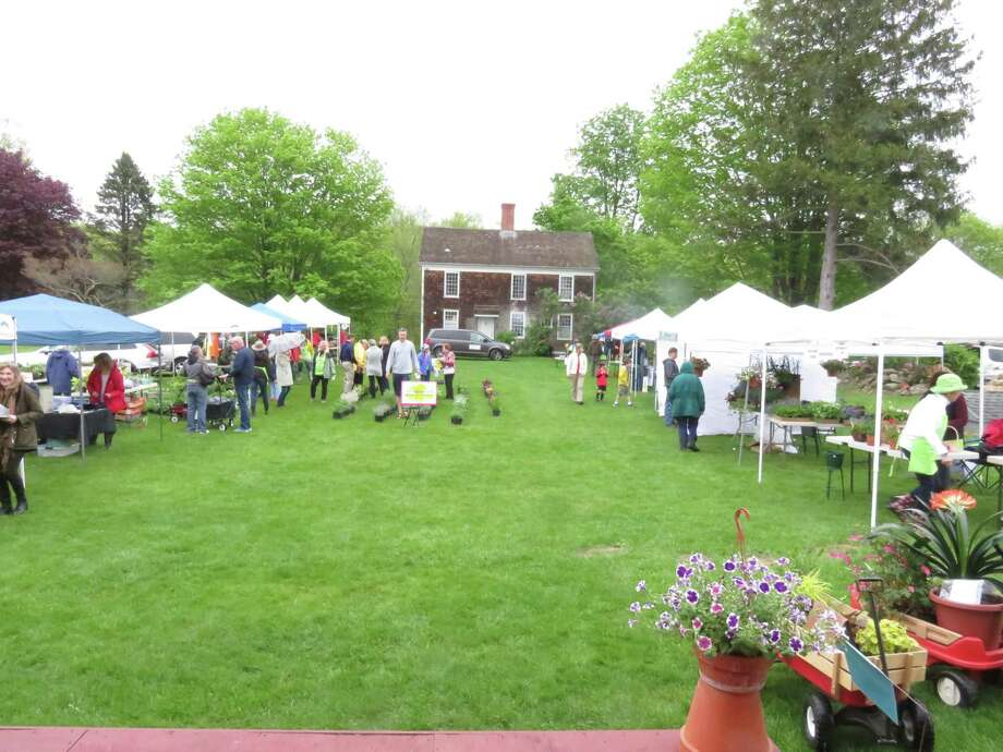 Redding Garden Club's annual plant sale at Lonetown Farm. Photo: Contributed Photo /