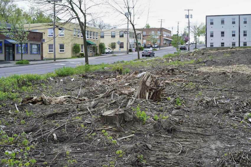 A view of a lot at 60 Colvin Ave., where trees were cut down recently, seen here on Thursday, May 9, 2019, in Albany, N.Y. (Paul Buckowski/Times Union)