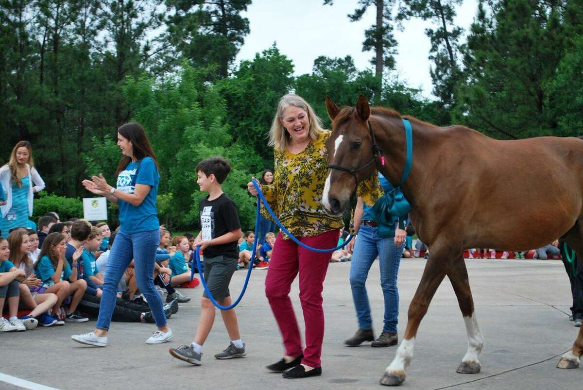 In a conclusion to the Coulson Tough Race for Awareness last month, the $35,000 raised enabled Inspiration Ranch to purchase a new horse for its therapy work.