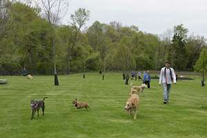 Milford residents and their dogs take time to experience the newly expanded dog park at Eisenhower Park in Milford, Conn., on May 10, when city officials held a ribbon cutting to officially re-open the park.