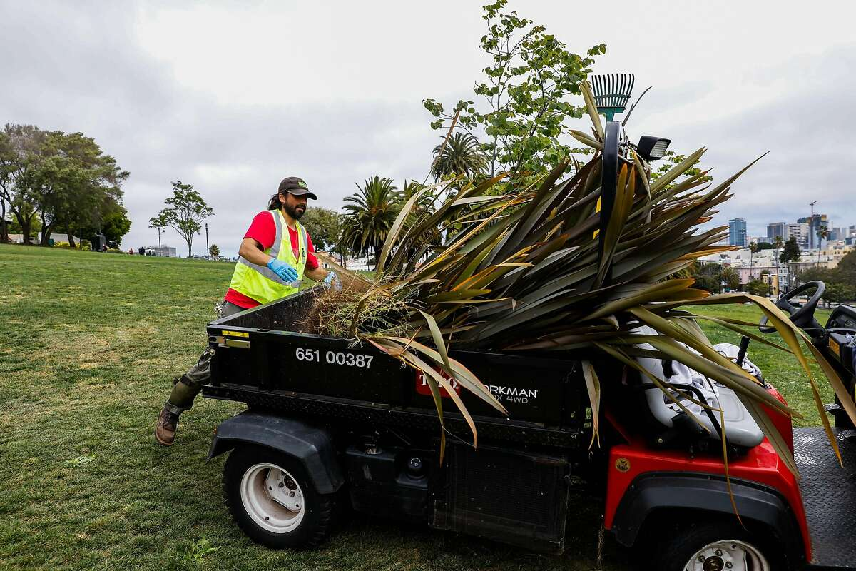 San Francisco Recreation and Park service gardner Emmanuel Gomez loads up a cart full of plants while gardening at Dolores Park in San Francisco, California, on Monday, May 13, 2019. Community residents have propsed to tax themselves to fund extra street cleaning services for the park to keep it maintained.