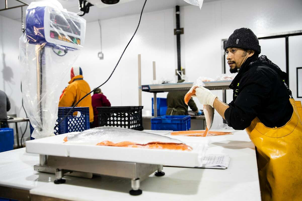 Juan Canizal weighs freshly filleted salmon at Four Star Seafood in San Francisco, Calif. on Wednesday, April 3, 2019.