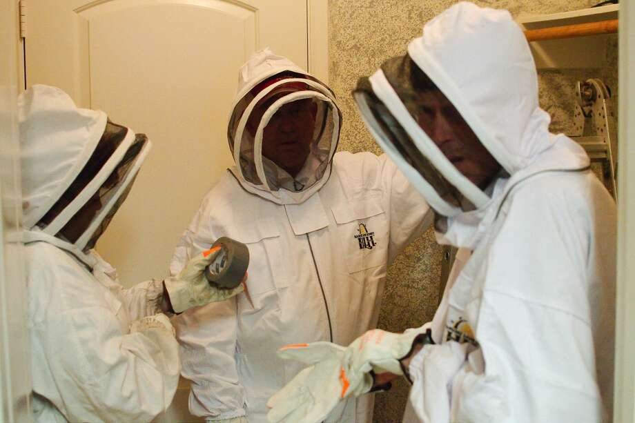 Michelle  Yarbrough, Mark Yarbrough and Jeff Yarbrough of M&M Bee Removal Service put on protective bee suits as they prepare for a bee hive removal and relocation  Monday, May 14. Photo: Kirk Sides/Staff Photographer