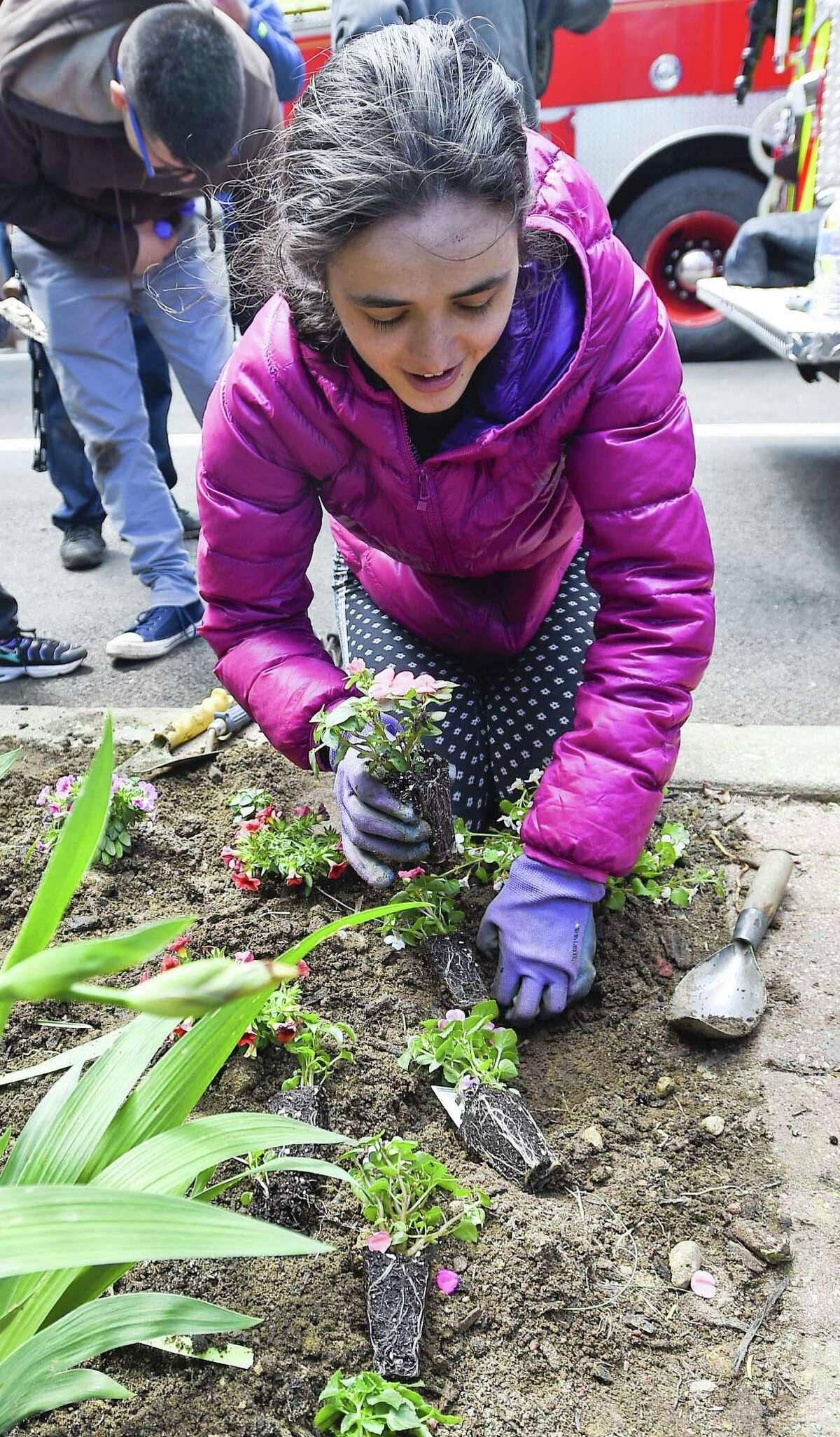 Jennie Bracken, a student from Stamford Public Schools Individuals Achieving Independence (IAI) program plants spring flowers at Stamford Fire Station #3 on May 15, 2019 in Stamford, Connecticut. Six students from the IAI program, along with a dozen firefighters spent the day planting flowers and shrubs to beautify the firehouse grounds. This is the fourth year that Stamford Public Schools Social Worker Laura Marino and Engine 3 Stamford Firefighter Tony Marino have paired individuals with firefighters to help students learn life and vocational skills.