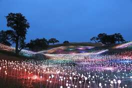 "Artist Bruce Munro's largest ""Field of Light"" installation to date opens May 19, 2019 at Sensorio in Paso Robles."