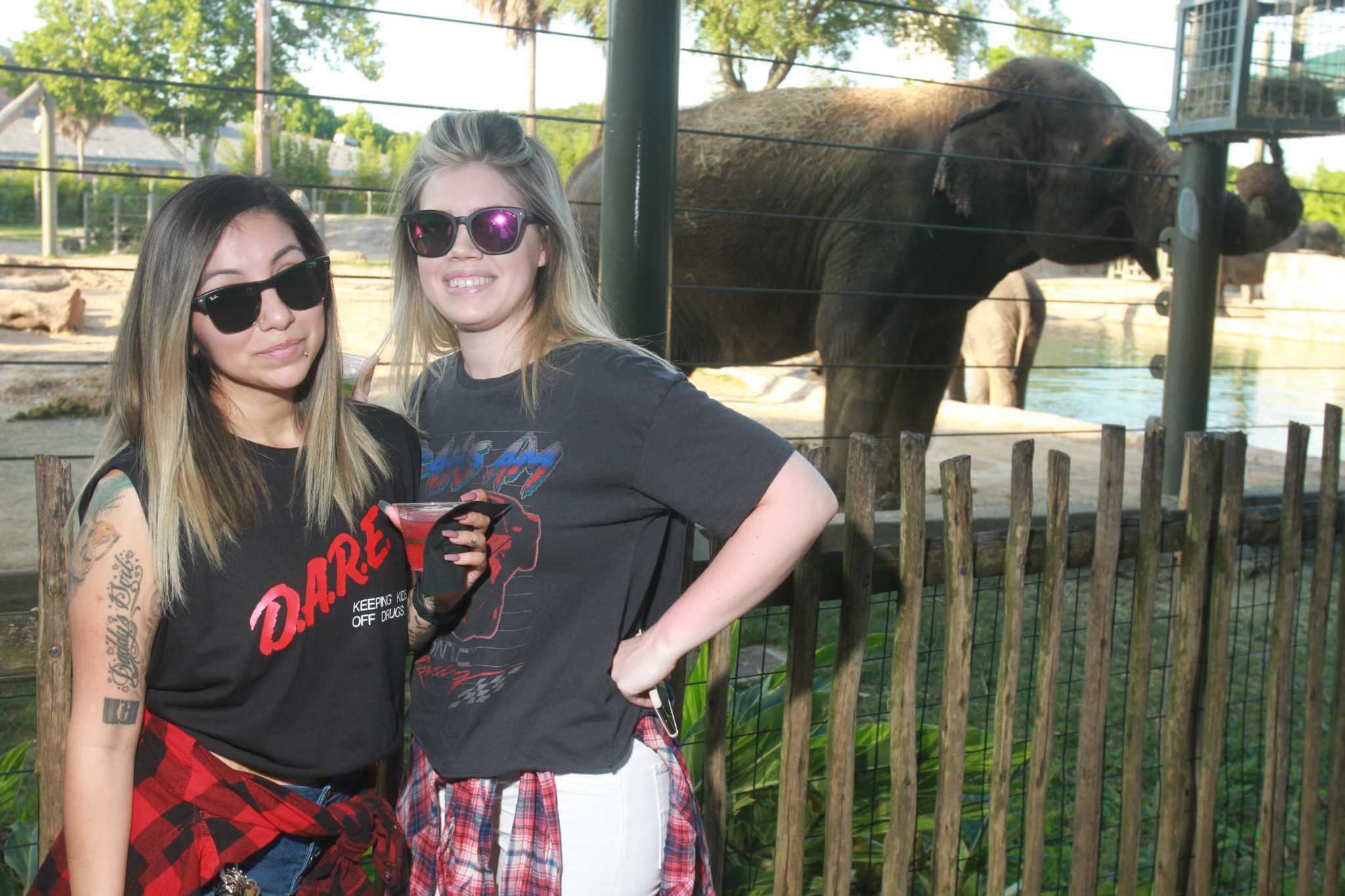Partygoers celebrate the '90s at adult-only 'After Dark' event at Houston Zoo