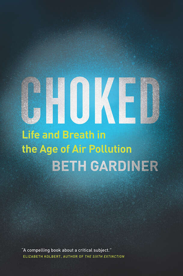 Choked: Life and Breath in the Age of Air Pollution Photo: Chicago, Handout / Handout