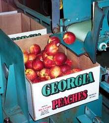 Georgia peaches for sale fresh off the truck June 5 in San