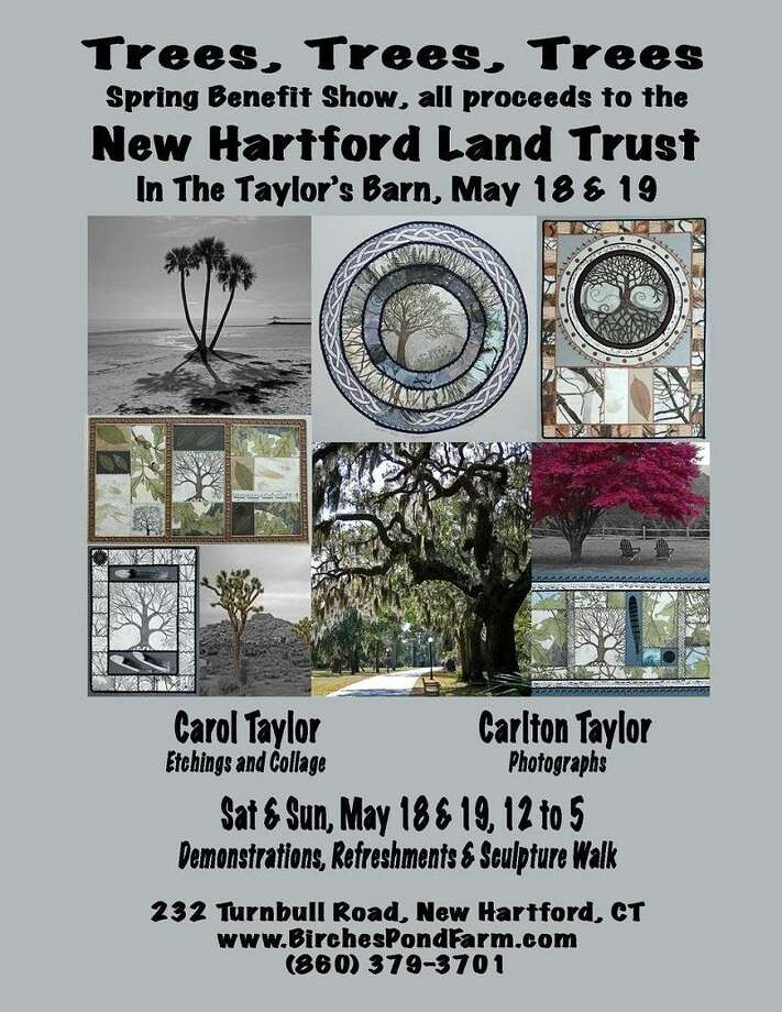The 'Trees, Trees, Trees' Spring Art Show to benefit the New Hartford Land Trust will be held Saturday and Sunday, 12-5 p.m. at 232 Turnbull Road, New Hartford. Photo: Contributed Photo