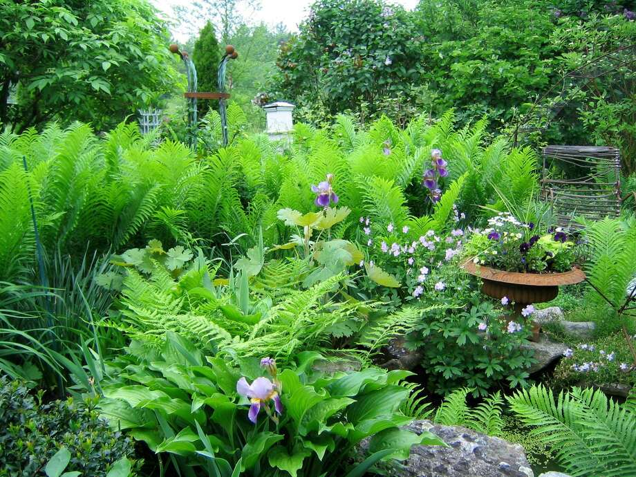 The Garden Conservancy is holding its annual garden tours June 1 in Litchfield County. Photo: Contributed Photo