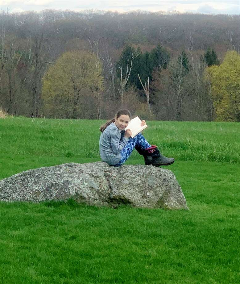 Ella Hartnett finds a comfortable boulder in the meadow to fill out her checklist. Photo: Jo Ann Jaacks / For Hearst Media CT