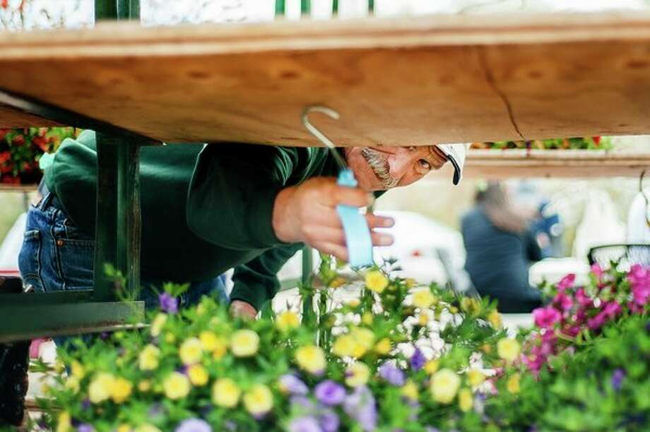 Mike Kozak of From Buds to Blooms arranges flowers during opening day of the Midland Area Farmers Market on Wednesday, May 8. (Katy Kildee/kkildee@mdn.net)