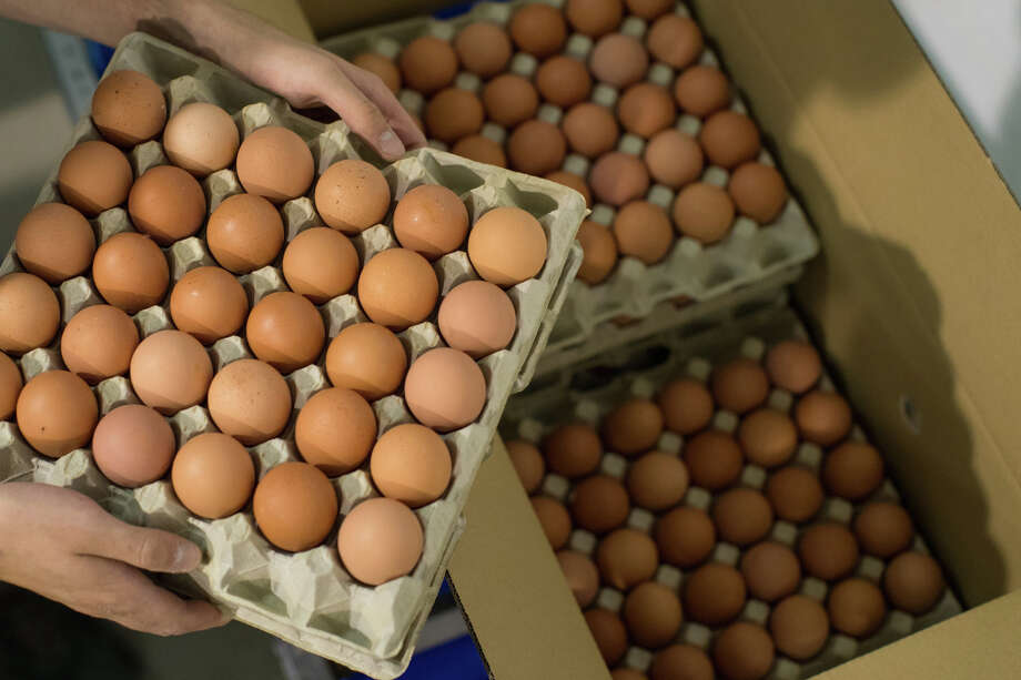 An employee packs a box with trays of fresh eggs inside an egg farm in the West Flanders region of Belgium, on Thursday, Aug. 10, 2017. Photo: Bloomberg Photo By Jasper Juinen. / © 2017 Bloomberg Finance LP