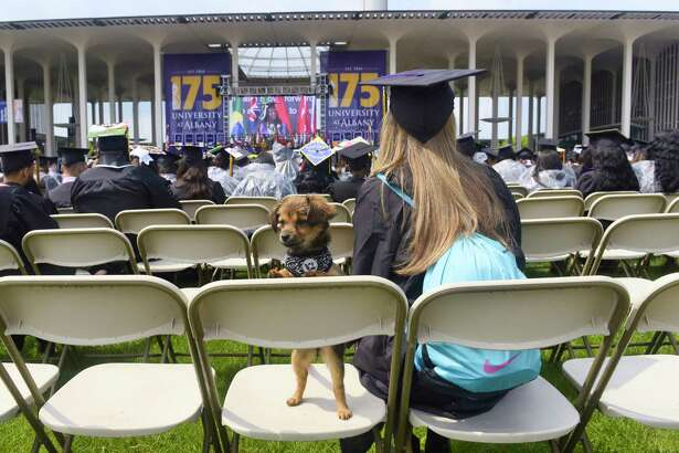 Graduate Rebecca Custer Slater of Canajoharie and her new dog Lilly, take part in the University at Albany 175th commencement on Sunday, May 19, 2019, in Albany, N.Y. Custer Slater bought Lilly as a graduation present to herself. (Paul Buckowski/Times Union)
