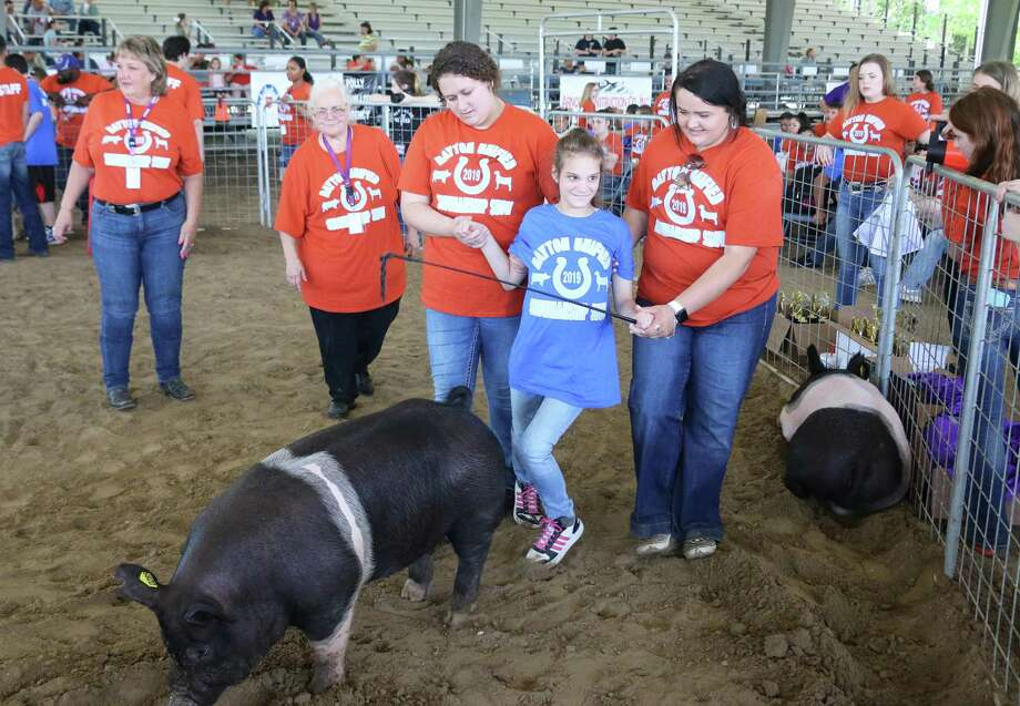 Cariss gets a little assistance from Tori Zimmer and Hannah Dodson as she shows her pig during the annual Unified Rodeo hosted by Dayton FFA students. Photo: David Taylor / Staff Photo