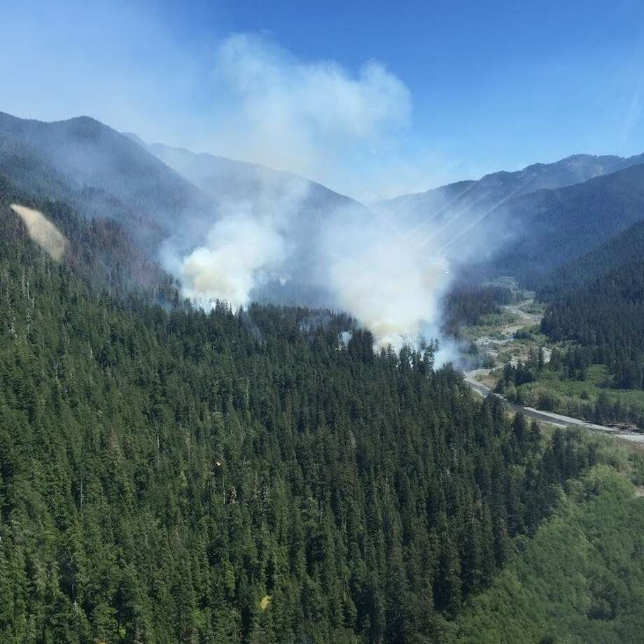 Paradise Fire in Queets Valley, July 2015 Photo: NPS Photo