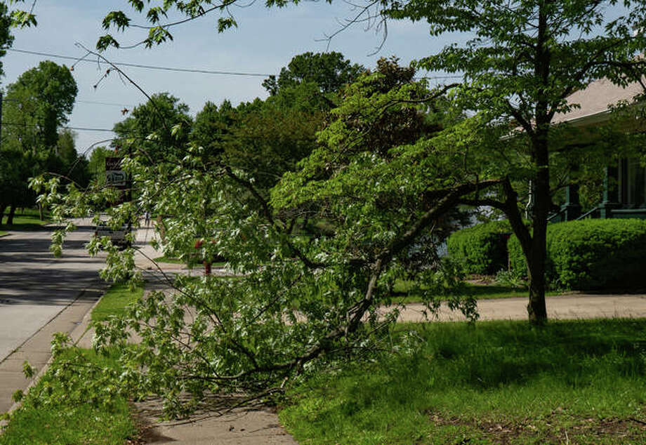 Land throughout Edwardsville is full of standing water, trees lost their limbs and belongings were thrown around during Tuesday night's thunderstorm which blew into through the Metro East a little after 7 p.m. The storm brought in heavy winds and tornado warnings. Over an inch of rain was recorded to have fallen, according to AccuWeather, with more thunderstorms expected Wednesday evening into Thursday. Edwardsville officials said no reports of major concern were made. Photo: Breanna Booker | The Intelligencer