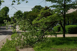 Land throughout Edwardsville is full of standing water, trees lost their limbs and belongings were thrown around during Tuesday night's thunderstorm which blew into through the Metro East a little after 7 p.m. The storm brought in heavy winds and tornado warnings. Over an inch of rain was recorded to have fallen, according to AccuWeather, with more thunderstorms expected Wednesday evening into Thursday. Edwardsville officials said no reports of major concern were made.